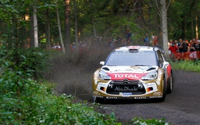 Picture trees, dust, turn, skid, gravel, wrc, citroen, the audience, Citroen, ds3, kris meeke, DS3