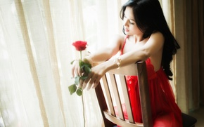 Picture girl, face, rose, chair