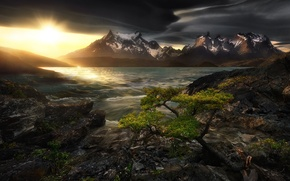 Picture the sky, water, the sun, sunset, mountains, stones, tree, shore, tops, stream, pond, Andes, Patagonia, …
