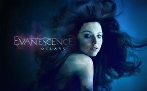 Wallpaper Evanescence, Look, Amy Lee