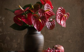 Picture flowers, Anthurium, still life, male happiness, fruit, Red, composition