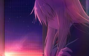 Picture girl, rays, sunset, one, Sakurasou no Pet na Kanojo, Shi Has Organizations, volossy, Kitty from …