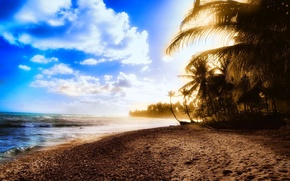 Picture sand, sea, wave, summer, water, trees, the ocean, shore, landscapes, beaches