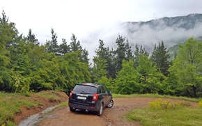 Picture Chevrolet, trees, nature, 4x4, Bulgaria, Captiva