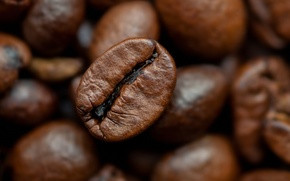 Picture beans, coffee, roasted