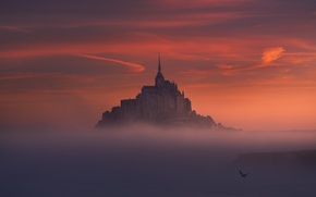 Picture bird, the evening, morning, haze, fortress