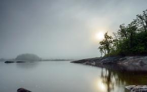 Picture night, fog, lake