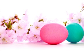 Picture holiday, beauty, Easter, colored eggs, cherry flowers