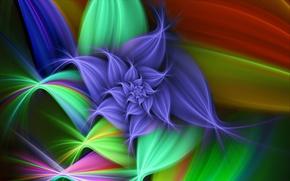 Wallpaper flower, graphics