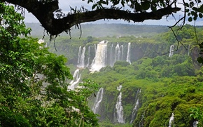 Picture greens, trees, branches, foliage, waterfalls, Brazil, Iguazu
