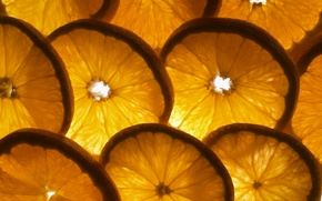 Wallpaper mood, oranges, fruit