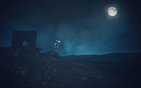 Picture the sky, stars, mountains, night, rendering, the moon, wolf, art, ruins, Wallpaper from lolita777