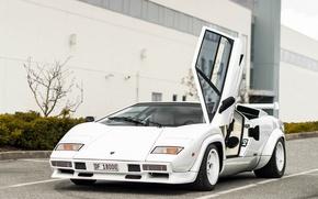 Picture car, white, Lamborghini, white, Countach, Lamborghini, LP500 S