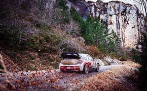 Picture Mountains, Rocks, Leaves, Sport, Machine, Citroen, Citroen, DS3, WRC, Rally, Rally, Total