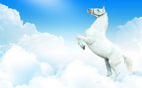 Picture white, the sky, clouds, fantasy, horse, horse