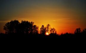 Wallpaper the sun, the evening, sunset