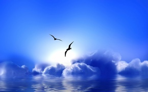 Wallpaper clouds, seagulls, Blue Paradise