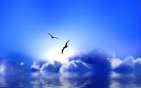 Wallpaper Blue Paradise, clouds, seagulls