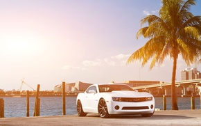 Picture white, the sky, bridge, the city, Palma, coast, Chevrolet, Camaro, white, Chevrolet, muscle car, skyscrapers, …