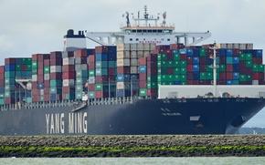 Picture sea, ship, a container ship