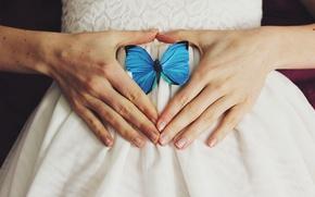 Wallpaper butterfly, wings, hands, blue