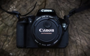 Picture tree, the camera, lens, canon