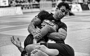 Picture Fight, Grappling, BJJ
