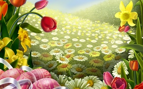 Picture field, eggs, tulips, Easter, Chamomile
