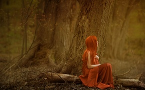 Picture forest, girl, mood, color