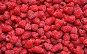 Picture berries, raspberry, food, a lot