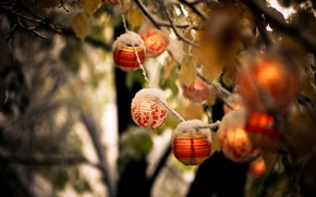 Picture NATURE, SNOW, LEAVES, AUTUMN, BRANCH, LANTERNS