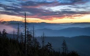 Picture sunset, mountains, nature, Clingman's Sunrise