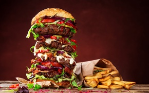 Picture Hamburger, Food, Buns, Fast food, French Fries