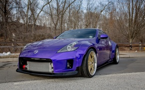 Picture TUNING, NISSAN, 370Z