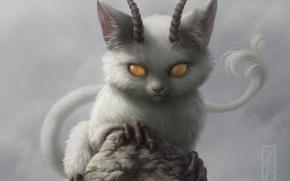 Wallpaper cat, rock, stone, the demon, horns, animal