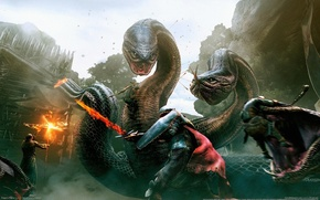 Picture the city, game, dragons, fight, game wallpapers, CG wallpapers, Dragon's dogma