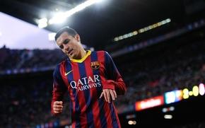 Picture Sport, Football, Barcelona, Football, Sport, FC Barcelona, Pedro Rodríguez, Pedro Rodriguez