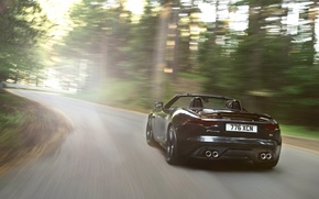 Picture light, movement, black, Jaguar, convertible, rear view, jaguar, f-type