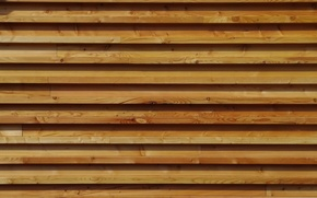 Picture Wall, style, wood