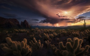 Picture clouds, storm, zipper, desert, cacti