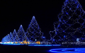 Picture garland, new year, holiday, spruce, night, alley