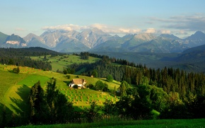 Picture Nature, Home, Mountains, Forest, Poland, Meadow, Field, Landscape, Tatra Mountains