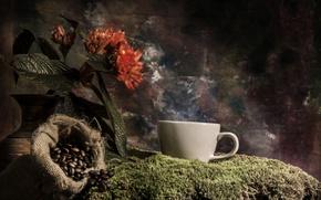 Picture flower, coffee, moss, mug, vase, bag, grain