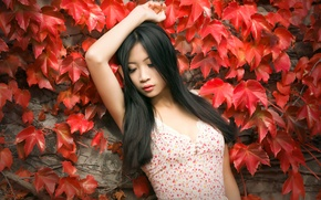 Picture leaves, girl, background