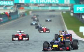 Picture Racer, Formula 1, Red Bull, Vettel, Sepang, Malaysia, Champion, 2014, The leader, Sebastian, RB10
