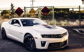 Picture machine, auto, asphalt, the fence, Chevrolet, Camaro, avto