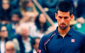 Picture Tennis, 1st, Serbia, Novak, Nola, Tennis, Serbia, novak djokovic, Atp, Djokovic, Nole, ATP, Djoka