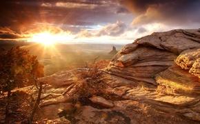 Wallpaper desert, Morning, rocks