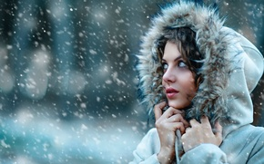 Picture cold, girl, snow, hood, fur, Alessandro Di Cicco, Let it snow