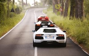 Picture red, white, black, road, trees, three, lp700-4, Lamborghini Aventador, mix